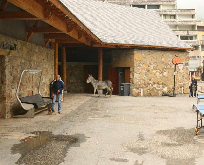 pic-du-midi-du-Bigorre-kabelbaan ezel