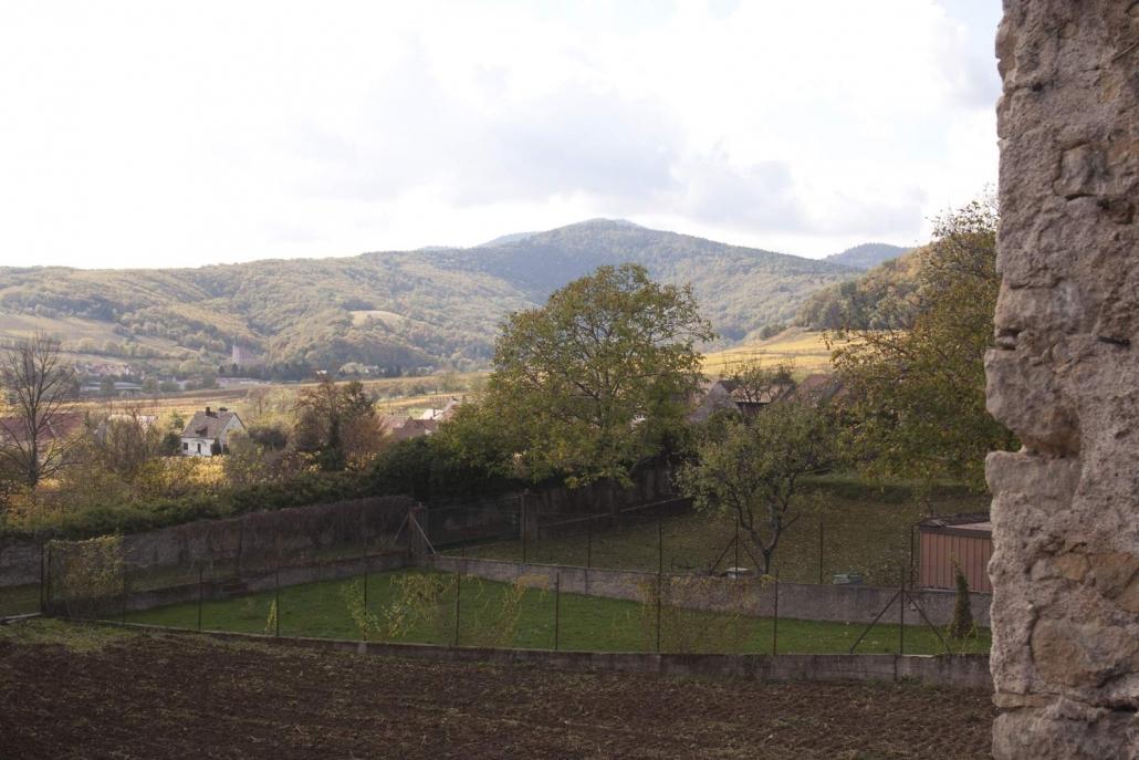 Uitzicht op de wijngaarden met daarachter de bergen van Vogezen in het dorp Mittelbergheim in de Elzas
