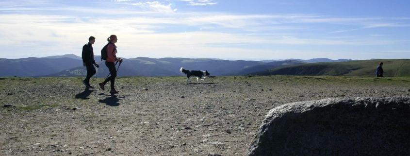 De top van de Hohneck één van hoogste bergen in de Elzas