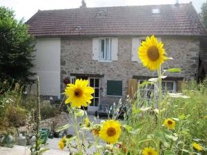 Bloemen bij het huis van de camping labalade in de Limousin Frankrijk
