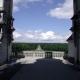 Uitzicht op het bos vanaf het dak van het kasteel